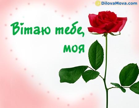 Вітання для моєї квіточки
