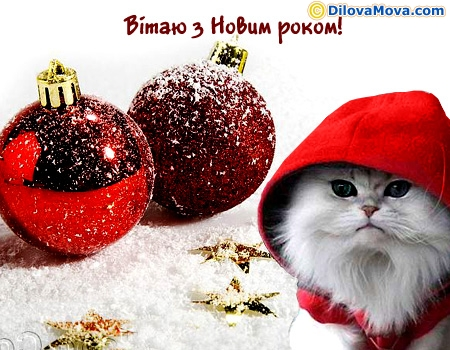 Мої вітання з Новим роком
