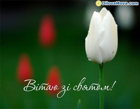 Вітаю зі святом 8 березня