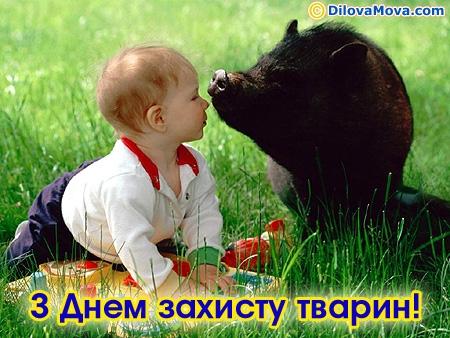Вітання захиснику тварин