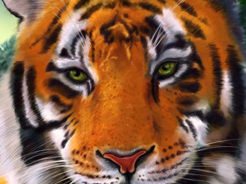 Тигриця файні тигри параметры