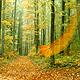 Листівка - Побажання приємної погоди
