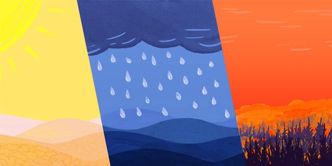 Подія 8 грудня - Всесвітній день клімату
