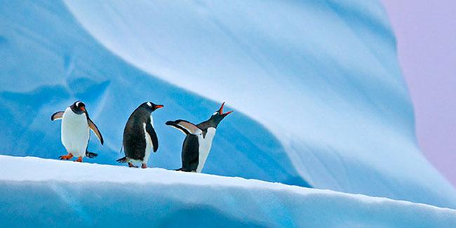 День відкриття Антарктиди
