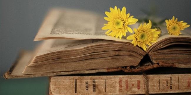 Любов до слова, а саме такий сенс в перекладі з давньо-грецької означає поняття філологія