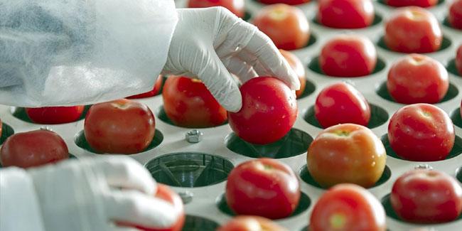 День працівників харчової промисловості відзначають у третю неділю жовтня