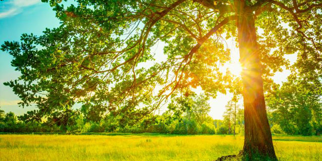 День літнього сонцестояння, як правило 20 або 21 червня